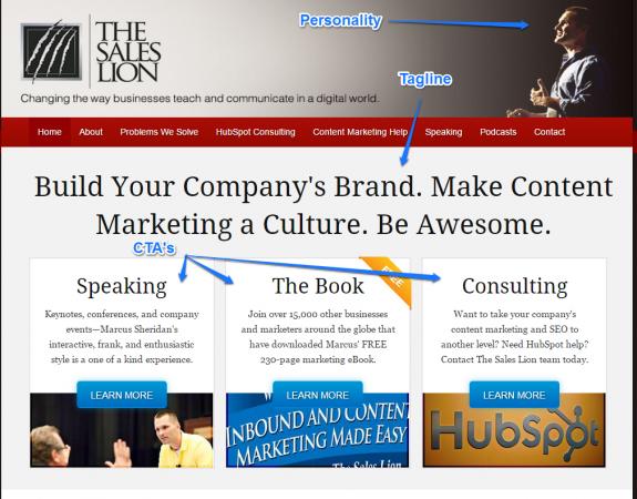 The Sales Lion Blog Design Home Page