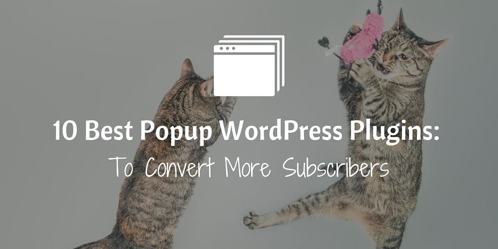 10 Popup WordPress Plugins To Convert More Subscribers